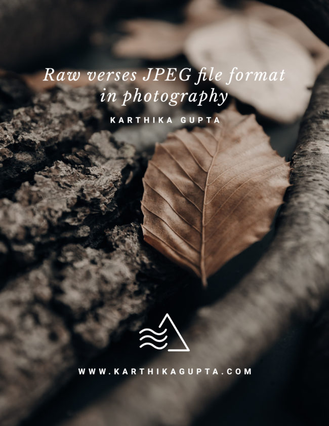 Raw verses JPEG file format in photography