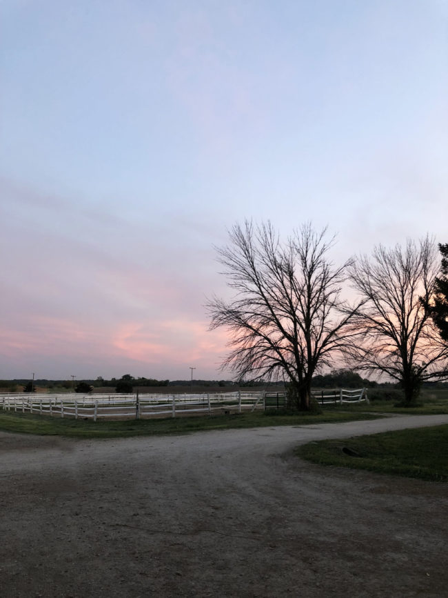 Pink sky at the barn edited Karthika Gupta