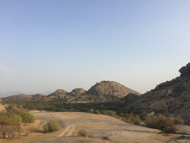 Rajasthan hills during morning safari - Karthika Gupta